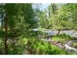 70452 Bear Creek Rd - Photo 14