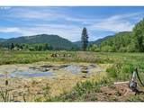 70452 Bear Creek Rd - Photo 4