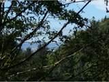 0 Ridge Ln - Photo 3