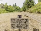 107 Legacy Dr - Photo 9