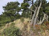 Bonnett Way - Photo 6