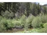 0 Canyon Creek Ln - Photo 3