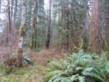 Washougal River Rd - Photo 1