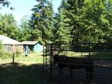 67898 Meissner Rd - Photo 22