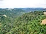 0 Silver Creek Canyon - Photo 10