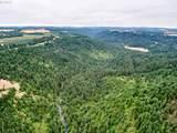 0 Silver Creek Canyon - Photo 4