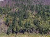 51209 Blue River Dr - Photo 6