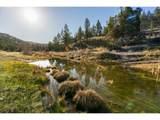 4095 Trout Creek Rd - Photo 2
