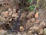 11525 Butte Creek Rd - Photo 14