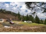 1320 Deer Hollow Ln - Photo 12