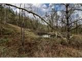 1320 Deer Hollow Ln - Photo 18