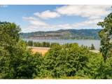 47925 Hist Columbia River Hwy - Photo 4