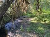 650 Lees Creek Rd - Photo 12