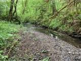 650 Lees Creek Rd - Photo 8