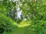 1806 Duncan Creek Rd - Photo 3