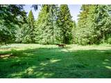 4109 407TH Ave - Photo 13