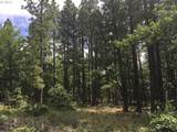 241 Pine Creek Rd - Photo 5