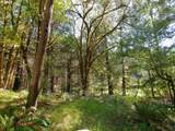 23481 State Hwy 42 - Photo 18
