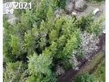 6200 View Loop - Photo 3