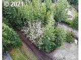 6200 View Loop - Photo 4