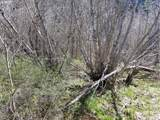 0 Nez Perce Way - Photo 4