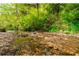 3731 Canyon Creek Rd - Photo 4