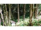 55976 Goldbrick Rd - Photo 25