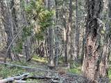 0 Mcnabb Creek Rd - Photo 27