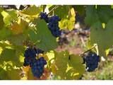 9405 Farmer Rd - Photo 4