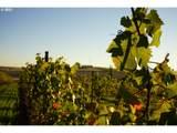 9405 Farmer Rd - Photo 6