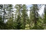Bear Creek - Photo 24