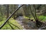 Bear Creek - Photo 3