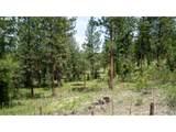 Bear Creek - Photo 5