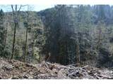 Haines Rd - Photo 13
