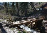 Haines Rd - Photo 9