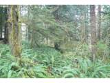 0 Old Pup Creek Rd - Photo 9