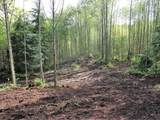 0 Buncombe Hollow Rd - Photo 22