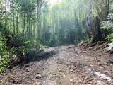 0 Buncombe Hollow Rd - Photo 23
