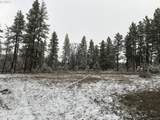 Pine Forest - Photo 10