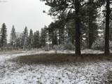 Pine Forest - Photo 13
