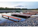 Lakes At Tanager - Photo 11