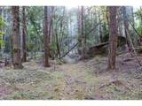 3887 Strickland Canyon Rd - Photo 21