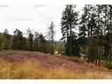 Mountain Ash Blvd - Photo 2