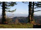 16618 Skyline Blvd - Photo 1