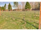 16885 Nelson Rd - Photo 23