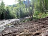 0 Buncombe Hollow Rd - Photo 13