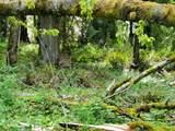12661 Cedarbrook Rd - Photo 24