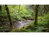 2732 Duncan Creek Rd - Photo 27