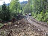 0 Buncombe Hollow Rd - Photo 11
