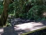 37717 Gordon Creek Rd - Photo 23